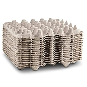 Biodegradable Pulp Fiber Egg Flats for Storing up to 30 Large or Small Eggs/Makes a Great Home for Roach Colony by MT… |
