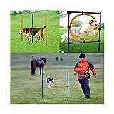 Jlxl Set De Entrenamiento Agilidad Perros Al Aire Libre for Mascotas Circulo De Salto Poste Vertical Travesaño con Bolsa Transporte