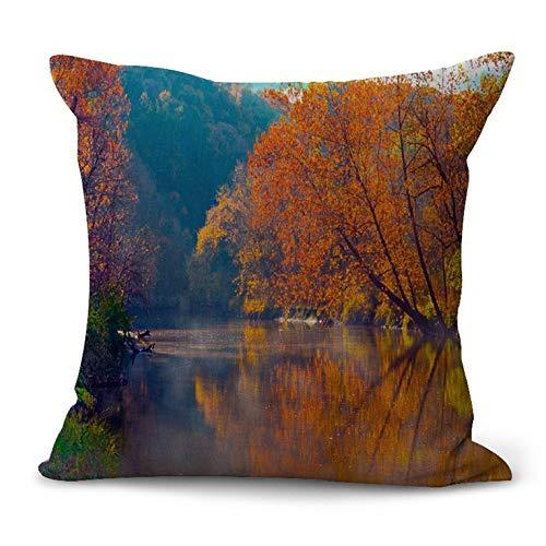 N/V F1001 Funda de almohada de lino decorativo para el hogar Funda de almohada de coche Sofá