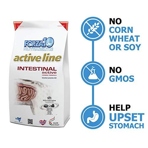 Forza 10 Active Line intestinal Secco Cane kg. 10-Secchi dietetici per Cani, Multicolore, Unica