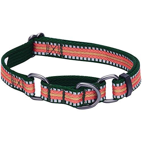 Blueberry Pet 2cm M 3M Reflektierendes Bunt Gestreiftes Dunkelgrün und Rosa Sicherheitstraining Martingale Hundehalsband für Mittelgroße Hunde