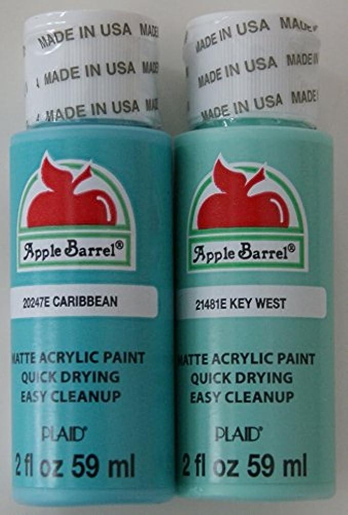 Apple Barrel Acrylic Paint Set - Caribbean and Key West (2 Ounces Each)