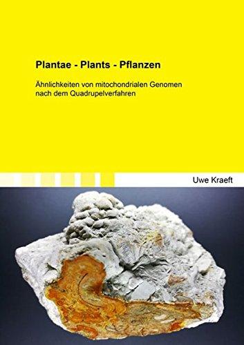 Plantae - Plants - Pflanzen: Ähnlichkeiten von mitochondrialen Genomen nach dem Quadrupelverfahren (Berichte aus der Geowissenschaft)
