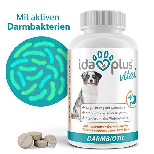 Ida Plus Darmbiotic 120 Tabletten - gesunde Darmbakterien - Probiotika zur Darmsanierung für den Hund - Immunsystem stärken & Darmflora aufbauen - Regulierung der Verdauung 1ner Set