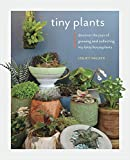 Tiny Plants: Discover the joys of growing and collecting itty bitty houseplants
