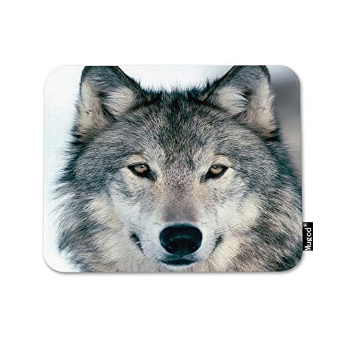 Mugod Grey Wolf Mouse Pad Winter Alpha Male Timber Wolf Face Portrait Gray Black Mouse Mat Non-Slip Rubber Base Mousepad for Computer Laptop PC Gaming Working Office & Home 9.5x7.9 Inch