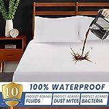 CraftoXo Protector de colchón impermeable tamaño queen, 100% algodón orgánico transpirable, funda de colchón, bolsillo profundo, libre de vinilo