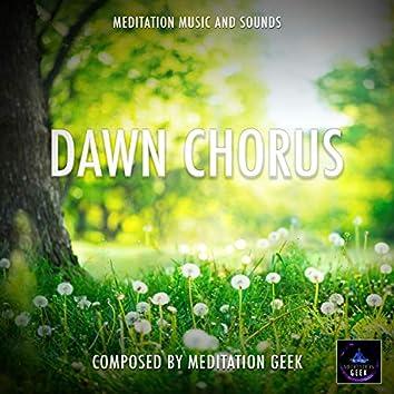 Dawn Chorus, Meditation Music, Sleep Sounds, Spa, Yoga