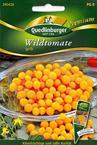 Wildtomate, Rarität, Wilde Tomaten, Lycopersicon pimpinellifolium, ca. 20 Samen
