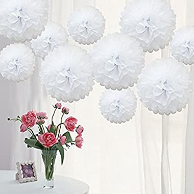 Danyoun 10pcs White Tissue Paper Christmas Wedding Pom Poms, Hanging Flower Balls Party Bridal Shower Nursery Decoration, DIY Wedding Reception Ceremony Birthday Outdoor Decorations