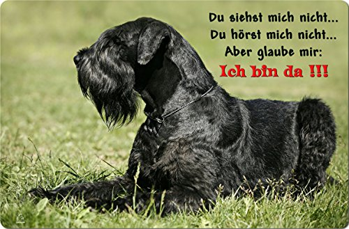 +++ SCHNAUZER Riesenschnauzer - Metall WARNSCHILD Schild Hundeschild Sign - SNZ 07 T2
