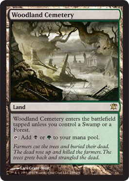 Magic: the Gathering - Woodland Cemetery - Innistrad
