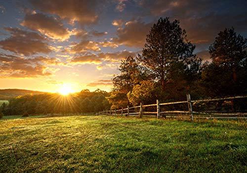 wandmotiv24 Fototapete Landschaft Wiese Sonnenaufgang, XL 350 x 245 cm - 7 Teile, Fototapeten, Wandbild, Motivtapeten, Vlies-Tapeten, Feld Zaun Wald M6172