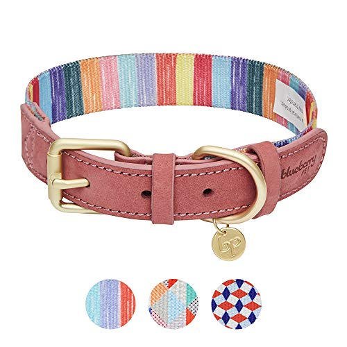 Blueberry Pet Regenbogentöne Bunte Kreidestreifen Polyester Stoffgewebe und Weiches Echtleder Hundehalsband, S, Hals 30,5cm-38cm, Verstellbare Halsbänder für Hunde