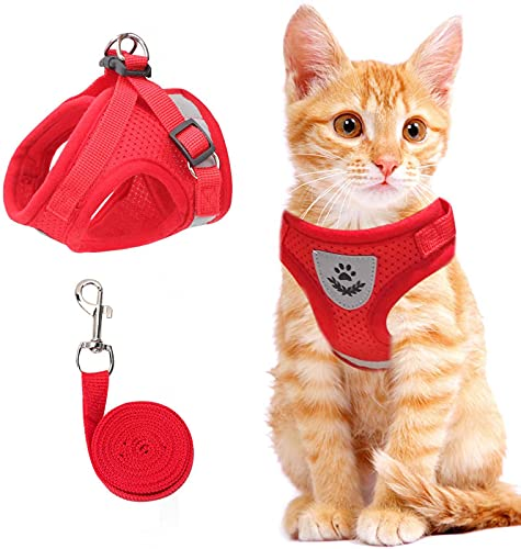 Cat Vest Harness and Small Dog Vest Harness for Walking, All Weather Mesh Harness, Cat Vest Harness with Reflective…