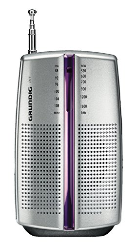 Grundig City BOY 31 PR3201 - Radio portátil (2 x AAA, AM/FM), color plateado