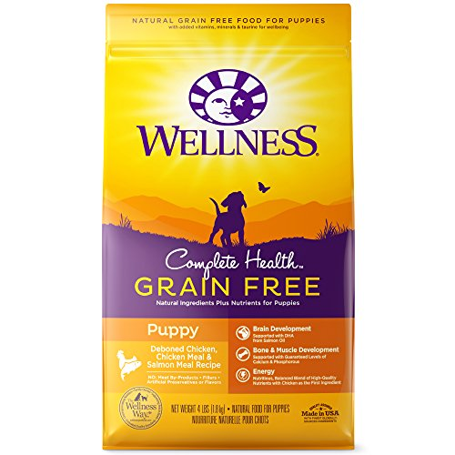Wellness Complete Health Natural Grain-Free Dry Dog Food Puppy Chicken & Salmon
