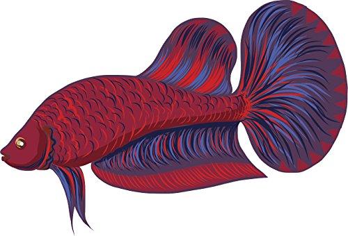 Beautiful Betta Fish Cartoon Art - Red Purple Vinyl Decal Sticker (8' Wide, #1)
