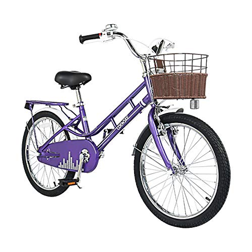 COEWSKE 20 Inch Kids Bike Fantasy-Style Children Leisure Bicycle with Basket Kickstand Included Fit for 6-9 Years Old Or 49-57 Inch Kids 3 Color