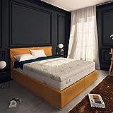 Baldiflex , Materasso Matrimoniale Memory Plus Top 4 Strati 160 x 190 cm Alto 25 cm, Rivestimento Sfoderabile Aloe Vera Cus. Saponetta incl.