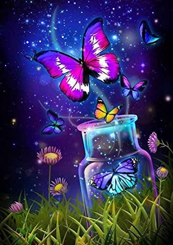 Fulanpai Diamond Painting Bordado de Punto de Cruz Diamante Pintura Completo Kit Botella de Mariposa Cielo Estrellado Arte Pared para decoración del hogar 5D DIY,Diamante Cuadrado,60x80cm