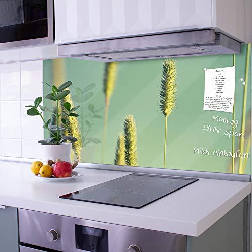 banjado Glas Spritzschutz für Küche und Herd | Küchenrückwand mit Motiv Ähren | Glasrückwand selbstklebend ohne Bohren | Küchenspiegel magnetisch und beschreibbar (110x55cm)