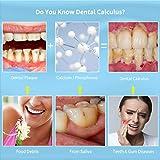 Zoom IMG-2 tartaro rimozione ifanze denti pulizia