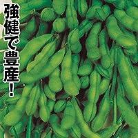 国華園 種 野菜たね 枝豆 あじまつり 1袋(30ml)/メール便配送 21年春商品