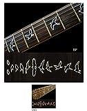 Jockomo Inlay Stickers, Fret Mark-Birds(w/edge-BP)