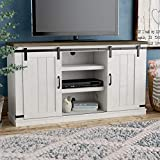 Asifom Modern Farmhouse Wood TV Stand for TVs up to 60 Inch, Home Living Room Storage Table TV Stands Cabinet Doors and Shelves Entertainment Center, Stone Grey