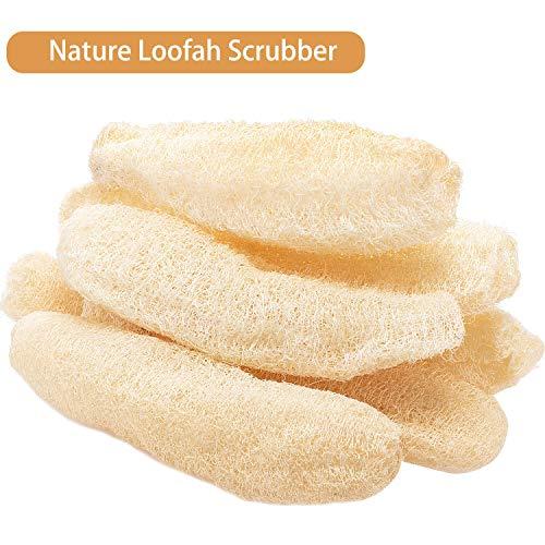 Loofah Natural Entero (22-35 Cm) Esponjas de Esponja de Esponja de Celulosa Exfoliante Biodegradable (6 Piezas)