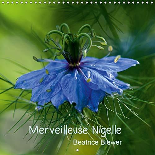Merveilleuse Nigelle (Calendrier mural 2020 300 × 300 mm Square): Une merveilleuse petite fleur, la Nigelle de Damas (Calendrier mensuel, 14 Pages ) (Calvendo Nature)