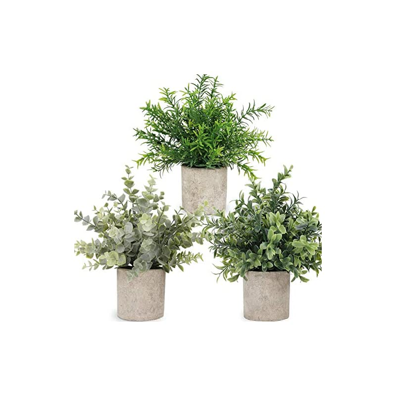 silk flower arrangements c appok artificial potted plants small fake eucalyptus plant, mini plastic green grass with pot, faux rosemary plants for home decor, indoor, table decoration - 3 pack, green
