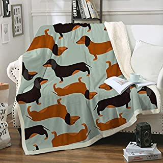 Zevrez Dachshund Sherpa Fleece Blanket for Kids Bedding Cute Dog Animal Blanket Super Soft Plush Flannel Throw Blanket for Couch Bed Sofa (Dachshund, 48x60)