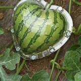 Bosji Heart-Shaped Shaping Growth Molds Watermelon 6.7X6.7X6.7'' DIY Magic Vegetable Growth Forming Mold Tool Durable Garden Heart Fruit Mould Love Heart Shaping Mold (Transparent)