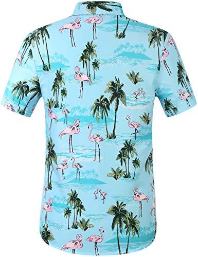 SSLR Men's Printed Casual Button Down Short Sleeve Hawaiian Shirts (Large, Blue (168-284))