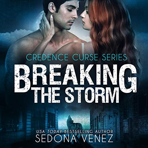 Breaking the Storm audiobook cover art