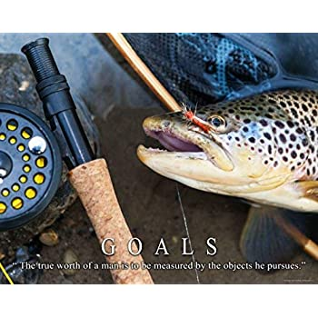 Trout Fly Fishing Motivational Poster Art Print 11x14 Reels Poles Rods Wall Decor Pictures