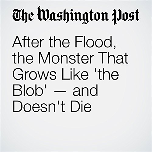 After the Flood, the Monster That Grows Like 'the Blob' — and Doesn't Die copertina
