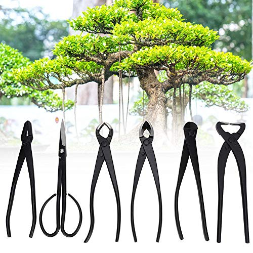 Great Features Of Wandisy Bonsai Pruning Scissors Set, 6pcs Bonsai Garden Plant Scissors Trimming Cu...