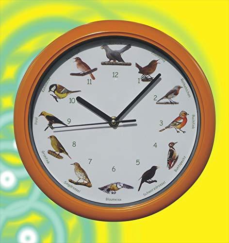 WIM-SHOP Vogel Uhr mit heimischen Vögeln und ORIGINAL Stimmen mit SCHLAFMODUS