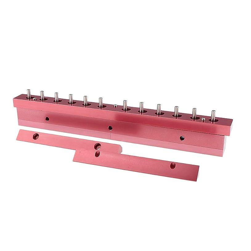 バラバラにする第二に連帯F Fityle 12.1mm口紅型 リップスティック 12穴充填工具 2タイプ選べ - 3way