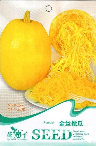 Heirloom Spaghetti Squash bio Nouilles Natural Semences Potagères, emballage d'origine, 20 graines / Pack, Spaghetti Marrow B069