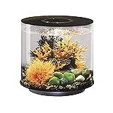 biOrb Tube 15 Aquarium with LED - 4 Gallon, Black