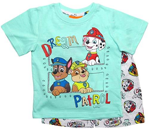 Paw Patrol Schlafanzug Jungen Pyjama Lang (Grau-Blau, 98-104)