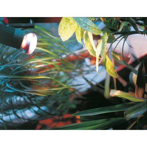 Pflanzenlampe 60 Watt E27 Reflektorlampe CONC R80 NATURA 60