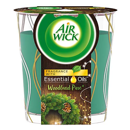 Air Wick Duftkerze für ätherische Öle, limitierte Edition, Kiefer