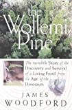 The Wollemi Pine: the Incredible Story of the Discovery and Survival of a Living Fossil from the Age of the Dinosaurs: The Incredible Story of the Discovery ... Living Fossil from the Age of the Dinosaurs