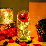 SOWUNO Led Rose Glass Light -Galaxy Flowers Beauty and The Beast Rose Galaxy Enchanted Rose Led Rose Flower Enchanted Rose Glass|Christmas| Mother's Day Wedding|Valentine's Day|Anniversary|Birthday