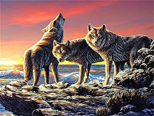 HQQN Animal DIY Pintura por números Pintura acrílica Sin Marco Números Lobo Kits de decoración del hogar-50x40cm Sin Marco